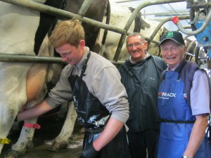Father and son at best practice in milking course