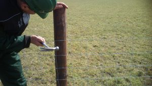 fencing-repair-farmers